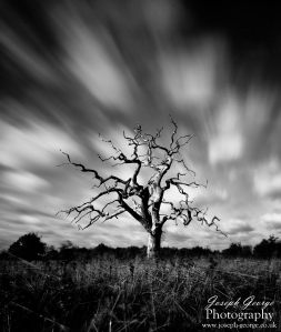 Black and White Suffolk Landscapes